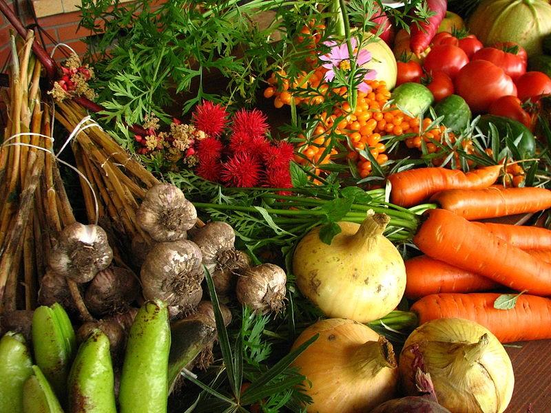 Rau, củ, quả hữu cơ không chứa các thành phần độc hại đối với sức khỏe