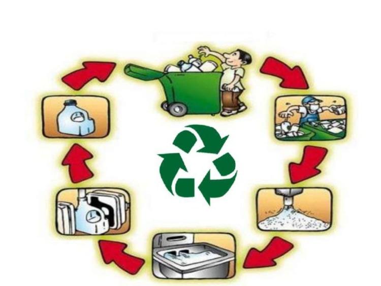 bao bì thực phẩm tái chế