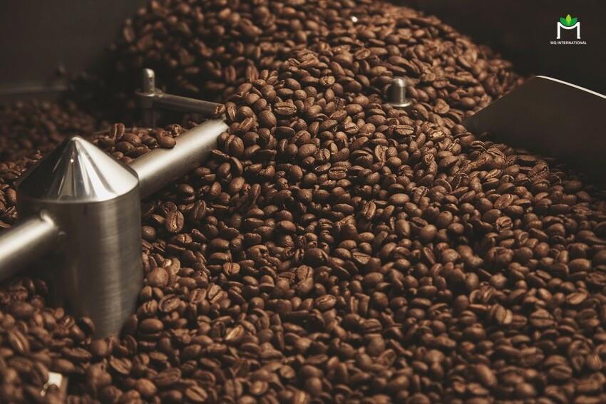 Cùi hạt cafe là thành phần chủ yếu tạo nên sự khác biệt giữa các cách chế biến